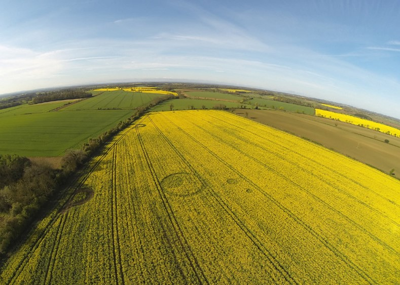 Tarlton Down, Nr Cherlington, Gloucestershire. Reported 18th April
