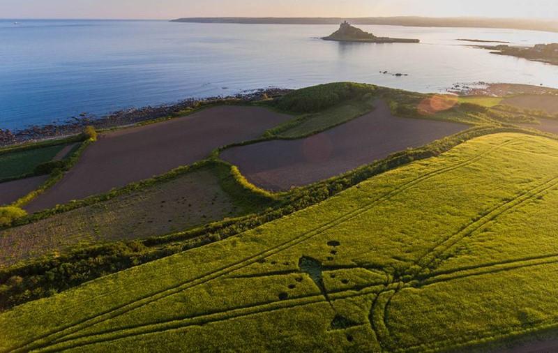 Venton Farm, Nr Marazion, Cornwall. Reported 24th May.
